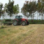 Le alternative all'aratura: semina su sodo, minima lavorazione e strip-tillage